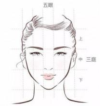 日漫人物角色脸型与脸部结构演示讲解画法图片 脸部五官比例结构