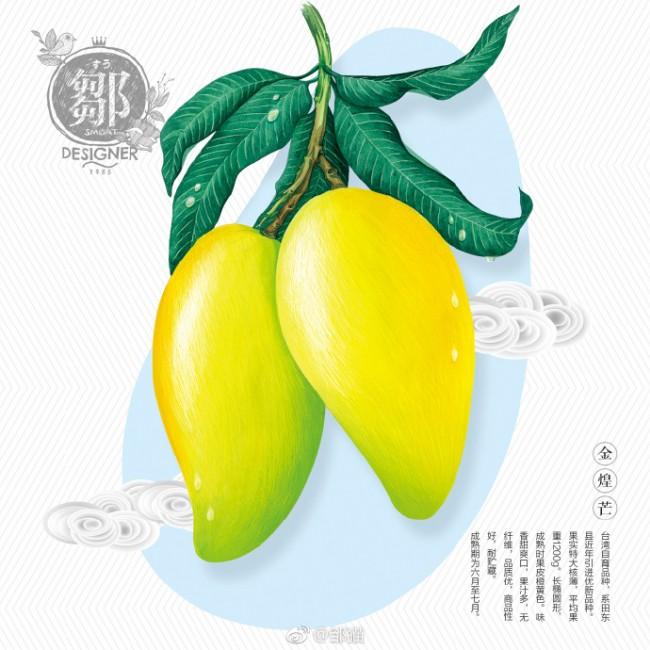 芒果水彩画教程 芒果水彩怎么画 芒果的画法 芒果手绘