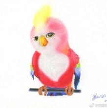 楚乔传 苍梧鸟彩铅手绘教程图片 楚乔传里那只可爱的苍梧鸟 鹦鹉怎么画