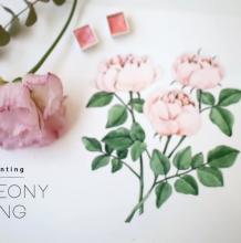 清新而优雅的水彩牡丹花,传递给你芳香。