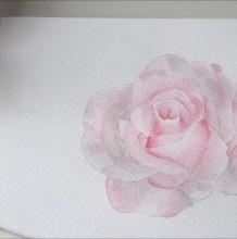 【视频】将水溶性彩铅当水彩用画美丽的玫瑰花手绘视频教程