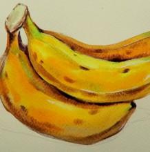 【视频】简单真实的香蕉水彩手绘视频教程 一串黄香蕉的画法