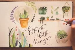 【视频】唯美清新的水彩手账封面图手绘视频教程 植物系图案水彩画法