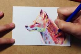 【视频】超美的多彩小狐狸彩铅手绘视频教程 好看的小狐狸彩铅怎么画视频
