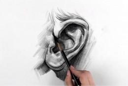 【视频】素描画人物的耳朵手绘视频教程 素描耳朵怎么画 耳朵的画法