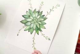 【视频】小清新多肉水彩植物照片写生手绘视频教程 多肉植物的画法视频