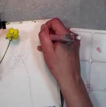 【视频】很简单小清新的小菊花野花水彩手绘视频教程