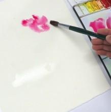 【视频】比较写意的朦胧美感水彩花卉手绘视频教程 这么简单 一看就会