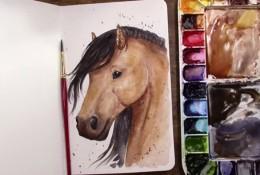 【视频】很帅气好看的马头水彩手绘视频教程 马怎么画 马的画法视频