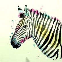 【斑马】很简单但是又很好看的斑马的水彩画手绘视频教程 教你画斑马的方法