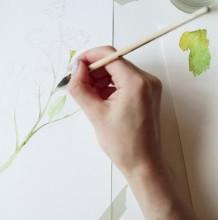 【视频】非常漂亮真实自然的玫瑰花水彩画手绘视频教程 带枝叶的玫瑰花
