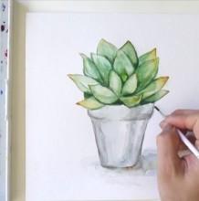 【视频】小清新花盆里的多肉植物水彩手绘视频教程 盆栽多肉的画法教程