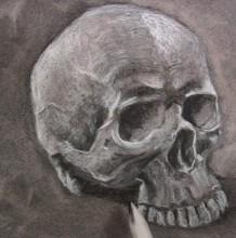 【视频】素描人物骷髅头像手绘视频教程 掌握人物头部面部骨骼结构