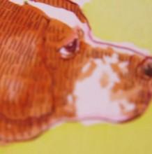【视频】两款简单可爱的狗狗头像水彩手绘视频教程 教你怎么简单的画狗狗