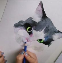 【视频】简单可爱的猫咪水彩手绘视频教程 唯美逼真黑白毛发猫咪头部水彩画
