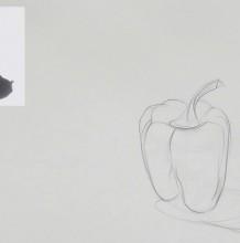 【视频】蔬菜青椒素描打形起形素描手绘视频教程 辣椒勾形素描教程