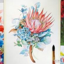 非常棒的植物花朵水彩手绘美图 优秀的花朵水彩画图片参考