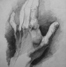 人物手部素描画参考图片 手部结构素描临摹图片