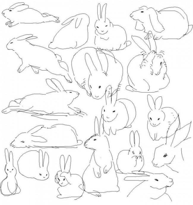 兔子简笔画手绘教程 小兔子怎么画 2