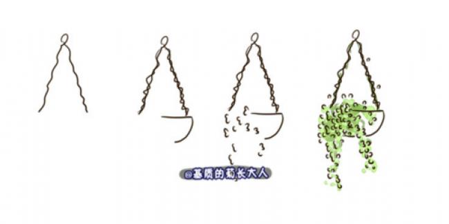 物盆栽最简单的简笔画画法 如何简单的画出好看的盆栽植物 2