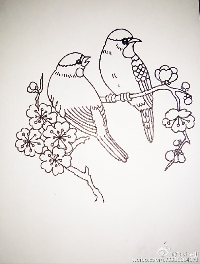 喜鹊简笔画图片彩色 小喜鹊简笔画怎么画教程 喜鹊登梅简笔画水彩上色