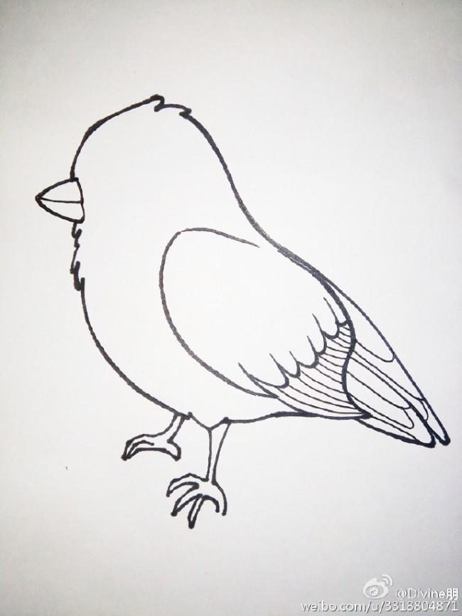 可爱小青雀简笔画教程图片彩色 站在树枝上的小鸟简笔画怎么画