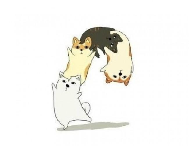 下逗逼的汪星人简笔画图片 可爱搞笑的狗狗简笔画插画作品