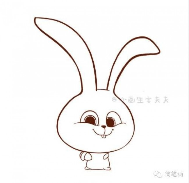 爱宠大机密 兔子小白简笔画 小兔子简笔画步骤 小兔子图片卡通