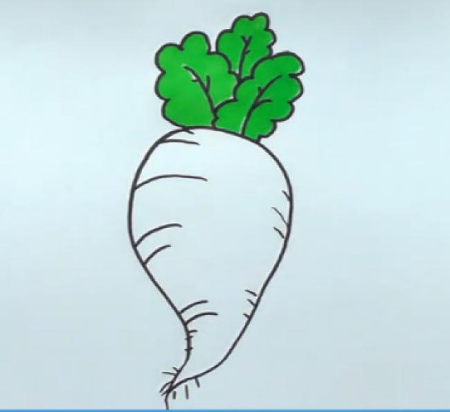 萝卜怎么画 萝卜简笔画 萝卜的画法 逼真形象的萝卜儿童画