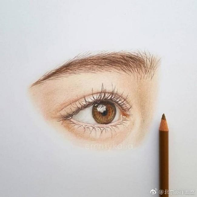素描眼睛的画法 眼睛的素描结构展示图片多款 眼睛的素描教程步骤 3图片