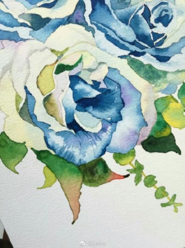 蓝玫瑰简笔画-玫瑰花蓝色妖姬水彩画手绘教程图片 蓝色妖姬怎么画 蓝色妖姬的画法图片