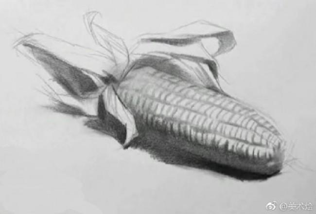 玉米的素描画画法 玉米素描怎么画 玉米素描教程图片步骤_www.youyix.com