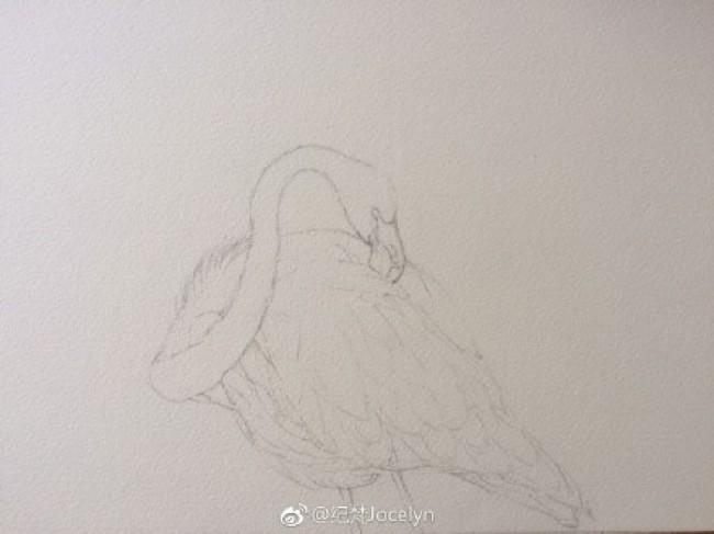 火烈鸟水彩画图片 火烈鸟水彩手绘教程 火烈鸟怎么画 画法_www.youyix.com