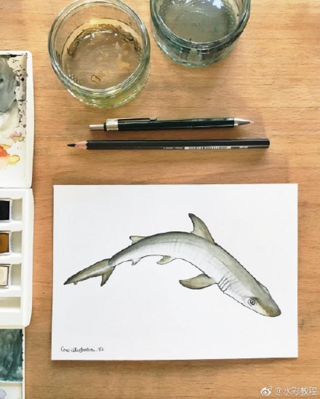 漂亮的海洋小鱼水彩画图片作品 各种好看的小鱼水彩画_www.youyix.com