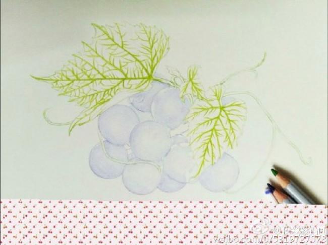 真3D感很强的葡萄彩铅画图片 葡萄彩铅手绘教程画法步骤图片