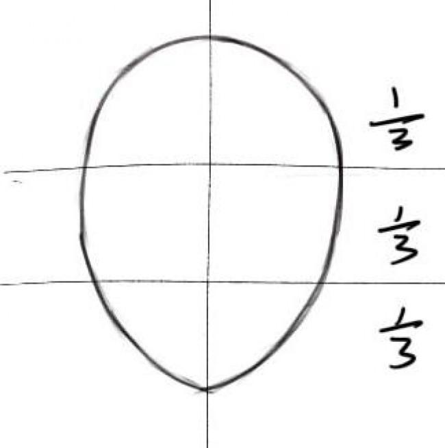日漫人物角色脸型与脸部结构演示讲解画法图片 脸部五官比例结构_www.youyix.com