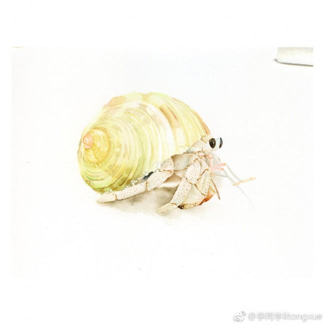 螃蟹水彩画图片 寄居蟹水彩画的画法 寄居蟹怎么画_www.youyix.com