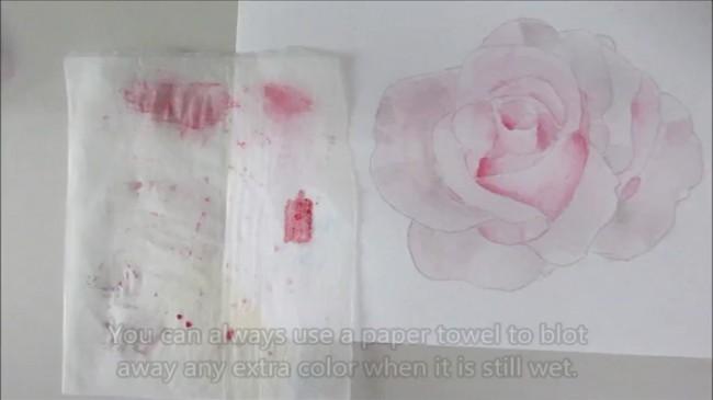 【视频】将水溶性彩铅当水彩用画美丽的玫瑰花手绘视频教程_www.youyix.com