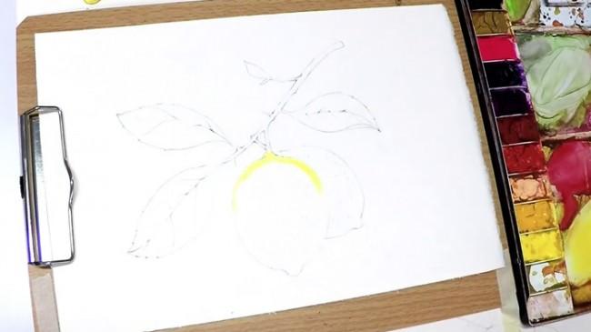 【视频】清新的柠檬水彩手绘视频教程 带枝叶唯美清新画法_www.youyix.com
