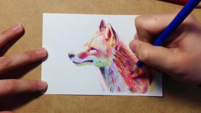 【视频】超美的多彩小狐狸彩铅手绘视频教程 好看的小狐狸彩铅怎么画视频_www.youyix.com
