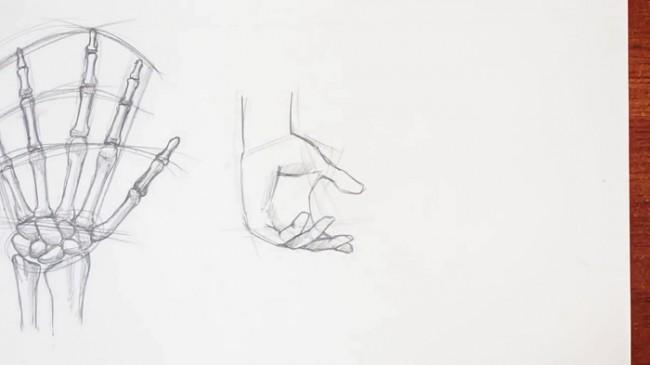 【视频】动漫画人物的手部画法视频教程 从手部骨骼到多角度画法案例示范_www.youyix.com