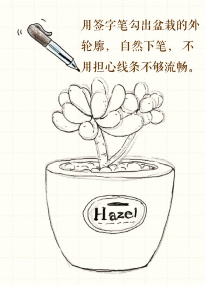 多肉植物彩铅画画法 多肉植物小盆栽怎么画 简单教程