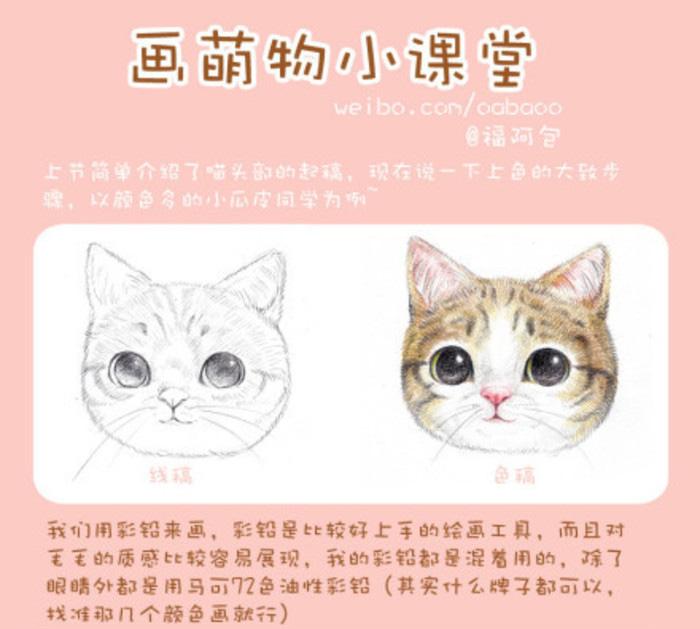 猫咪毛发绘画上色步骤和技巧讲解 精美细腻的猫咪头部彩铅上色教程