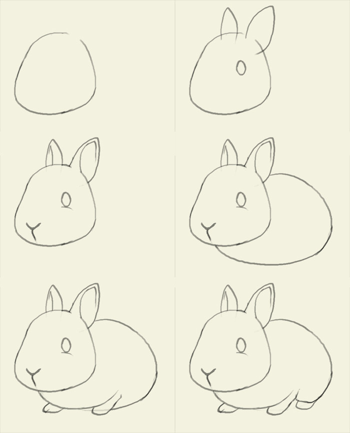 如何画兔子 兔子简笔画步骤图