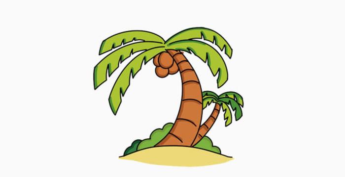 椰子树简笔画怎么画?椰子树卡通画儿童画手绘教程