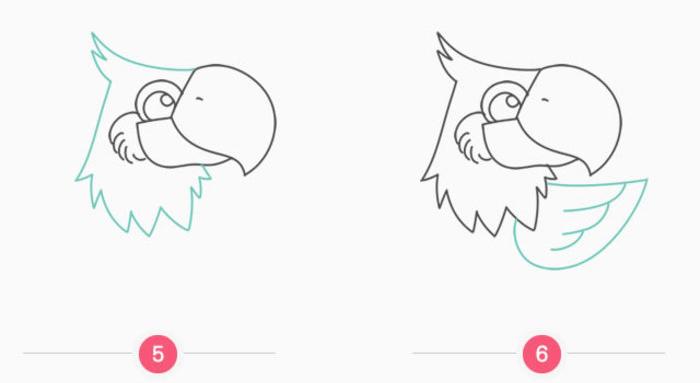 神气的鹦鹉卡通画怎么画 鹦鹉简笔画画法 鹦鹉的画法