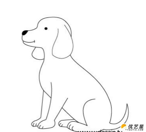 小狗的简笔画 可爱的小狗的手绘画教程(2)