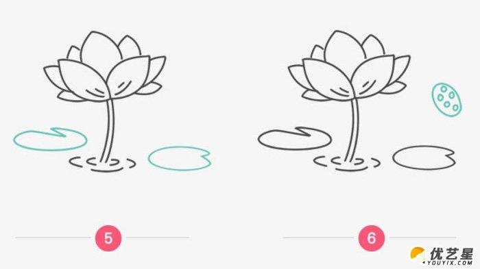 简单的荷花简笔画画法 莲花的画法卡通画手绘教程