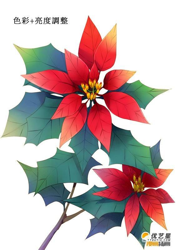 圣诞红,圣诞花怎么画 圣诞红绘画教程绘画素材