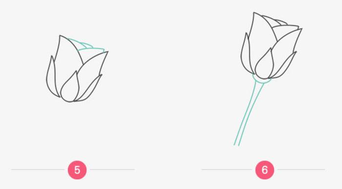 玫瑰花简笔画教程图片 玫瑰花的画法 玫瑰花简笔画怎么画